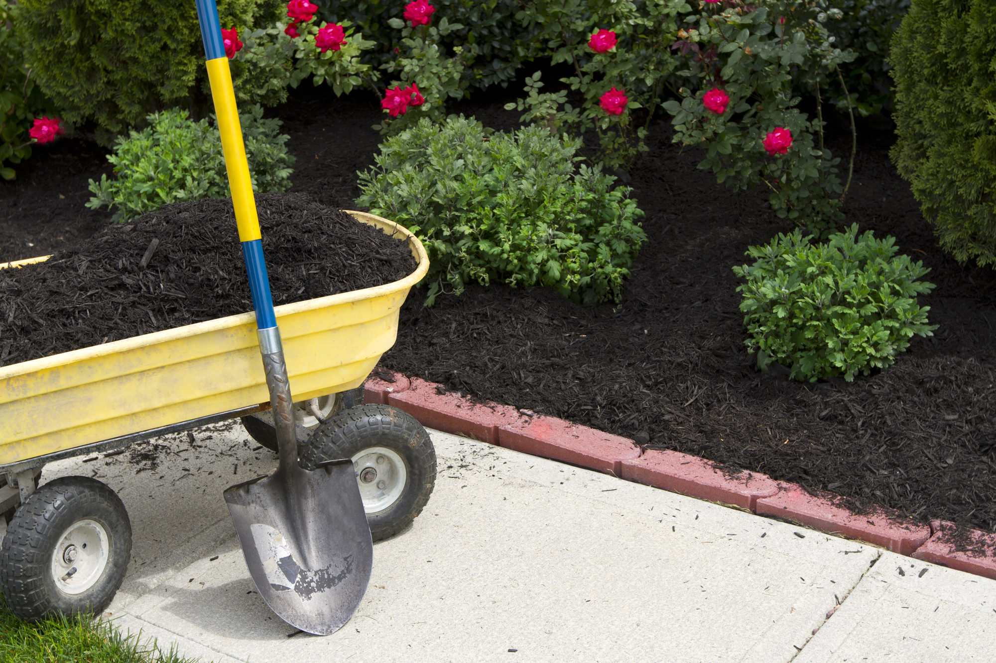 5 Mulch tips for the Pacific Northwest