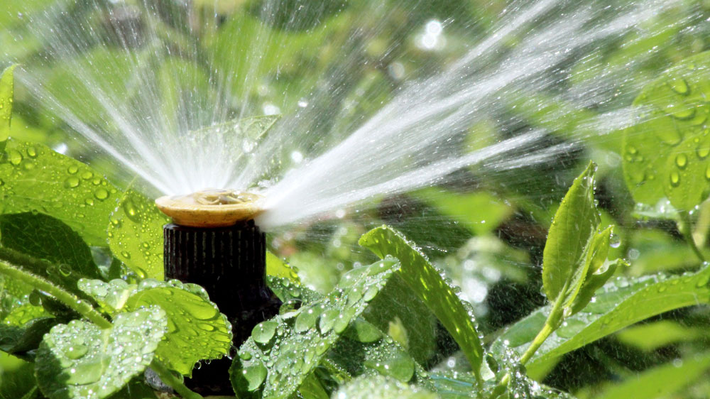 Watering your yard or lawn efficiently in the Pacific Northwest