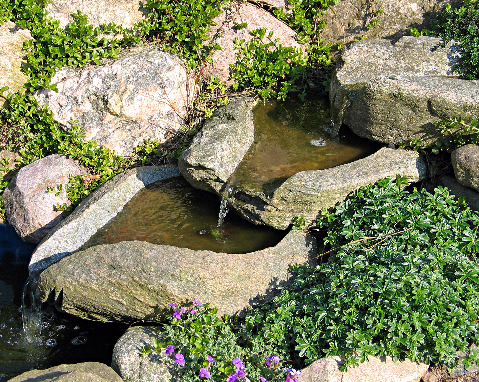 Erosion Control: Saving your Yard from Washout