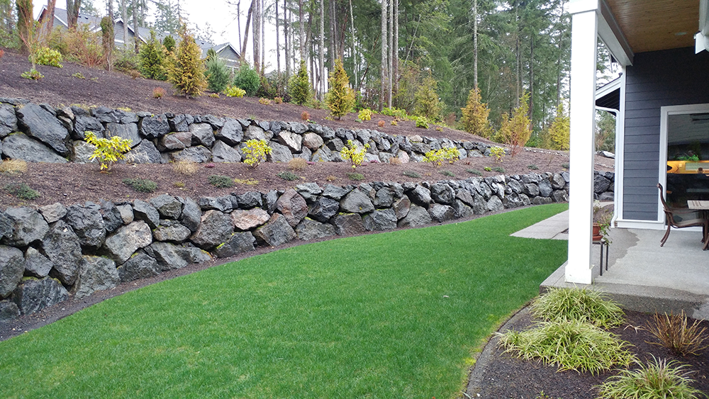 Keeping your Lawn Lush and Green in the Pacific Northwest