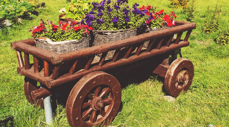 Wooden cart on green grass with blooming flowers in different colors