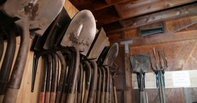 Choosing the Right Shovel for Your Gardening Tasks