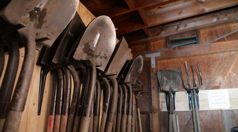 Gardening tools inside garden shed