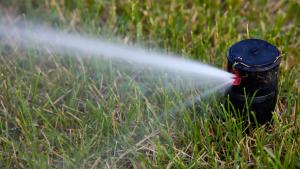 Sprinkler systems provide efficient watering for your yard